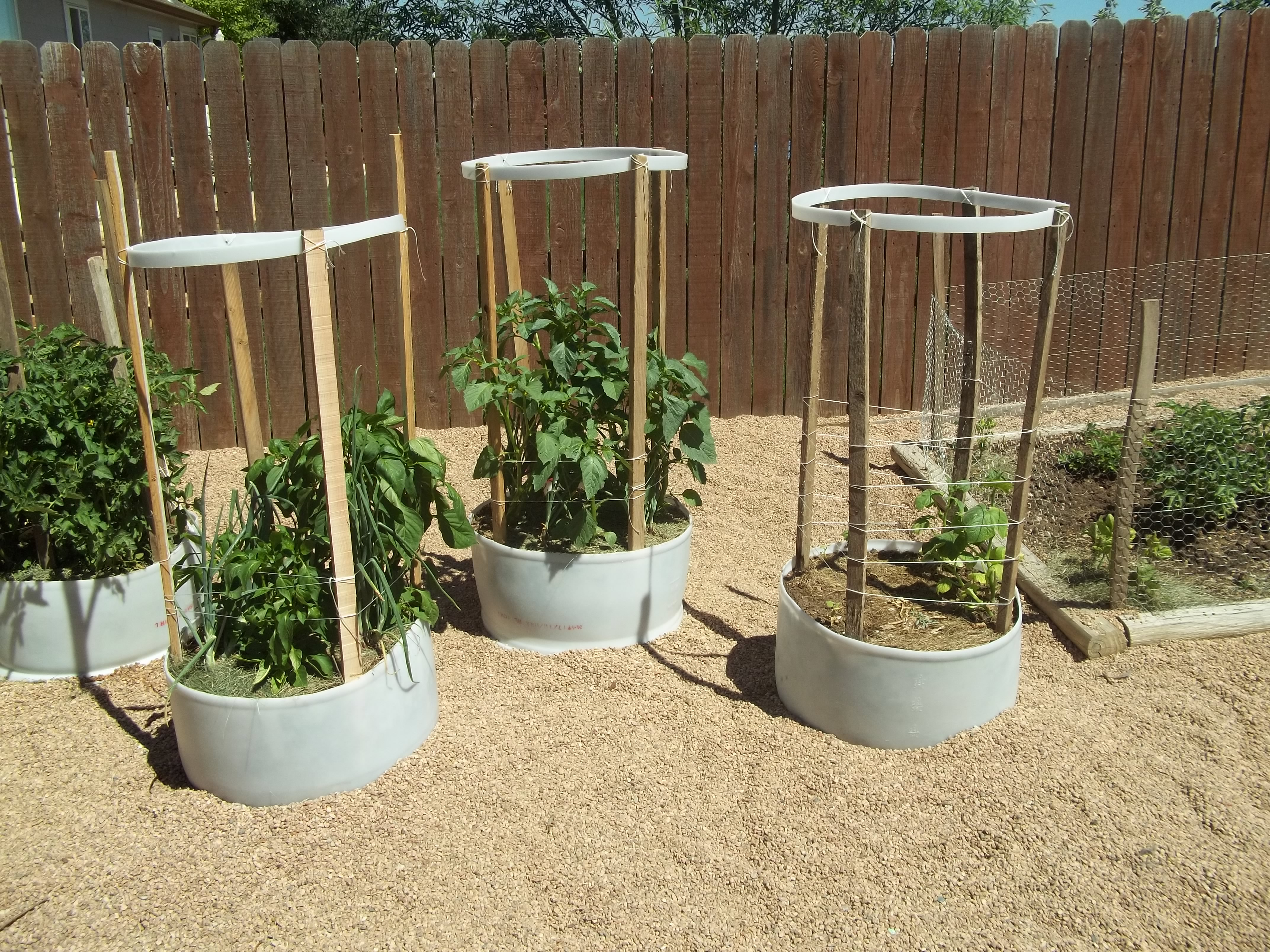 Gardening | His and Hers Homesteading | Page 4